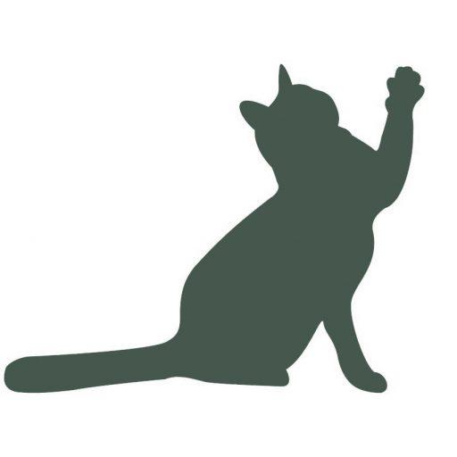 cat-3608033_1280